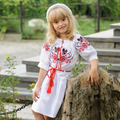 Embroidered dress for baby girl