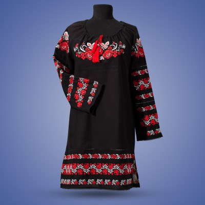"Embroidered dress ""Kalyna"""